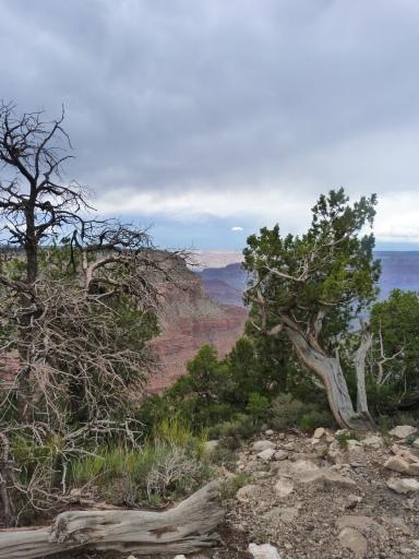 La découverte du Grand Canyon